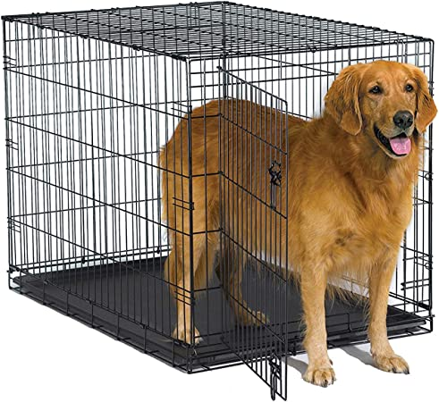 New World Folding Metal Dog Crate