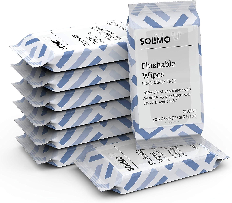 Amazon Brand - Solimo Flushable Adult Toilet Wipes