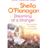 Dreaming of a Stranger: An unputdownable novel of hopes and dreams… and love