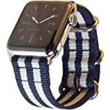 Apple Watch Band NYLON 42mm Blue & White Stripe NATO iWatch Band- Durable Woven Canvas Straps, Steel Adapters & Buckle Clasp (Silver) for 42 mm Apple Watch Series 3, 2, 1 Edition Sport by Carterjett