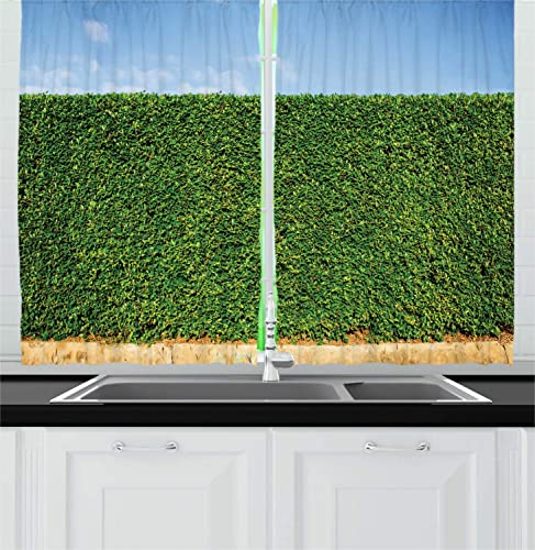 Lunarable Boxwood Hedge Kitchen Curtains, Botanical Ornamental Wall and Spring Open Sky Outdoor Photo, Window Drapes 2 Panel Set for Kitchen Cafe Decor, 55 X 39 , Green Pale Azure Blue Beige