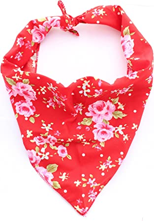 Floral Dribble Bib Bundle Bandana Red Roses Vintage Fabric Rainbow Dress