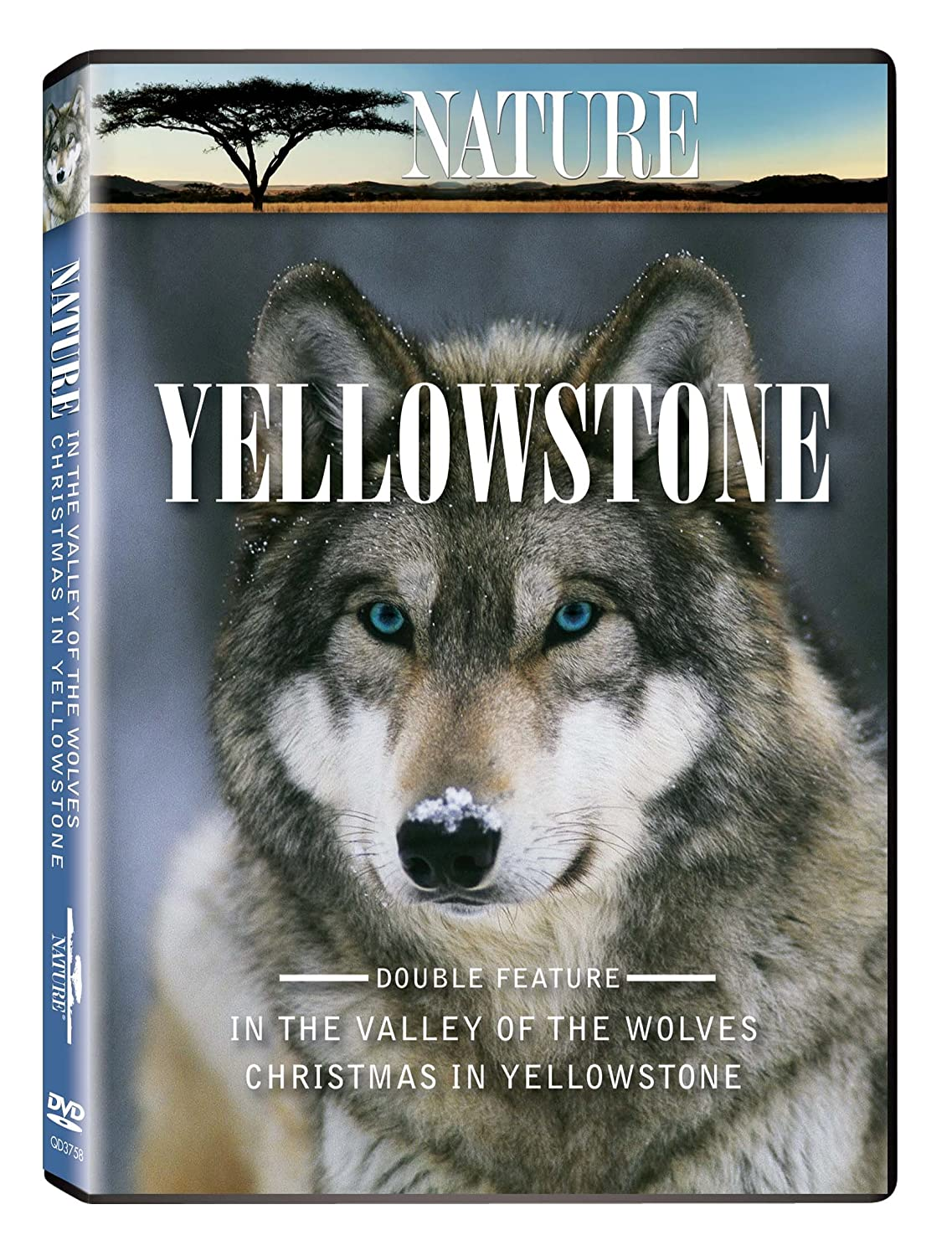 Nature: Yellowstone (In the Valley of the Wolves and Christmas in Yellowstone)