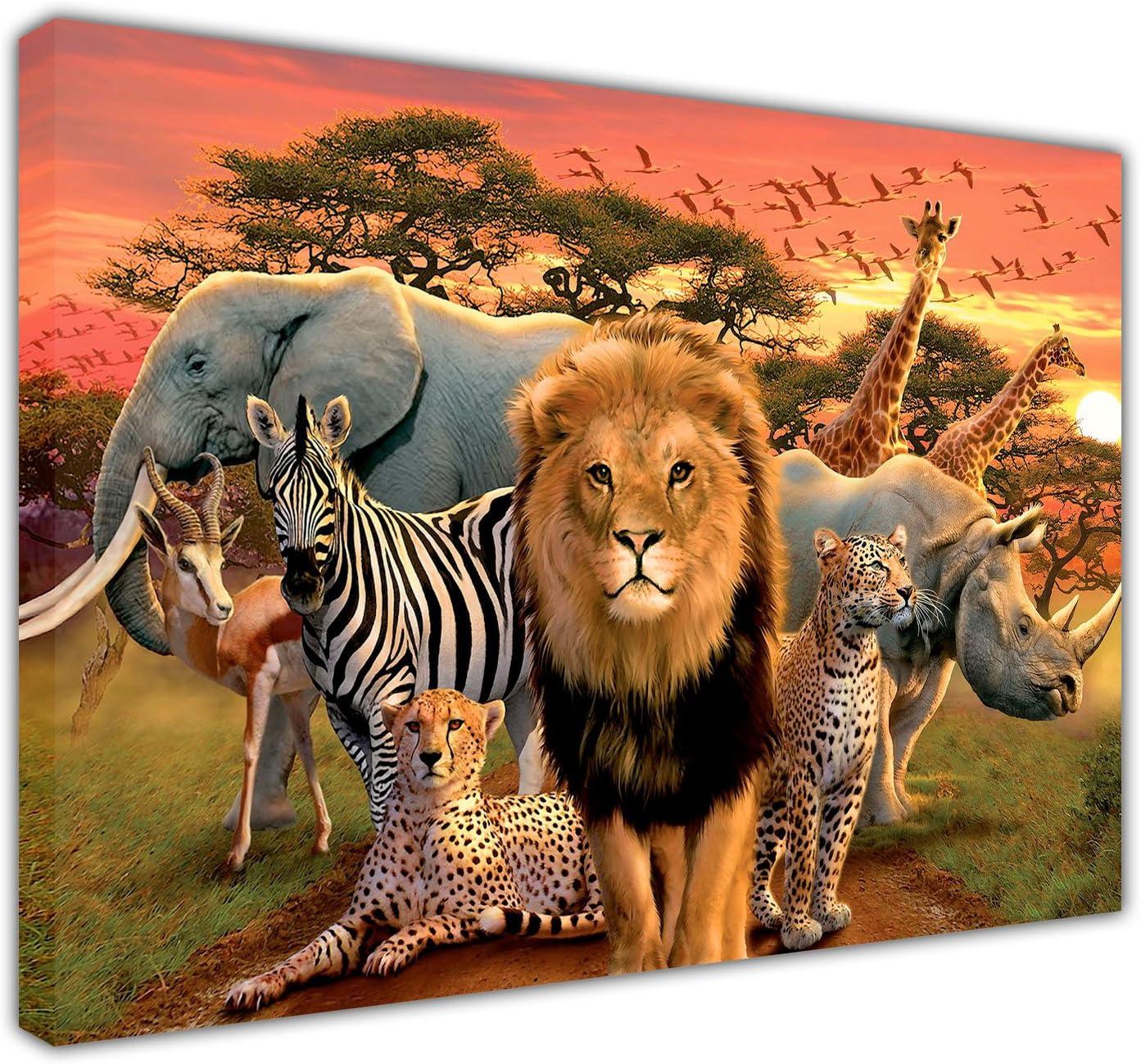 A4 Stunning Wildlife Poster Print White Lion A3