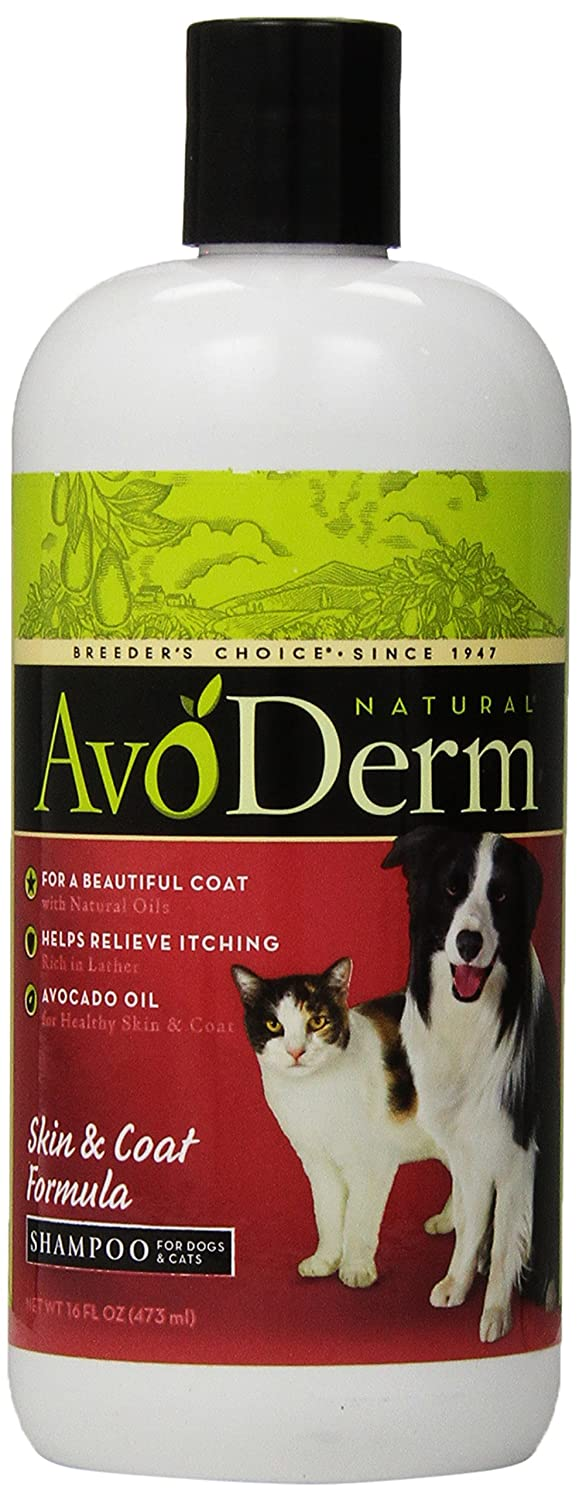 AvoDerm Natural Skin and Coat Formula Shampoo for Dogs and Cats - friendly dog shampoo