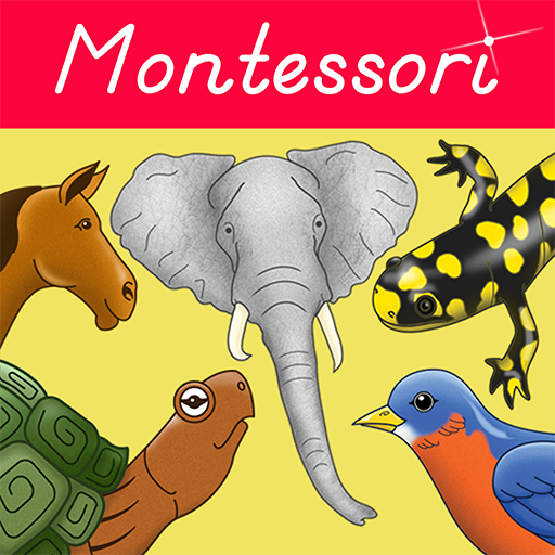 Parts of Animals (Vertebrates) - Montessori Approach to Zoology