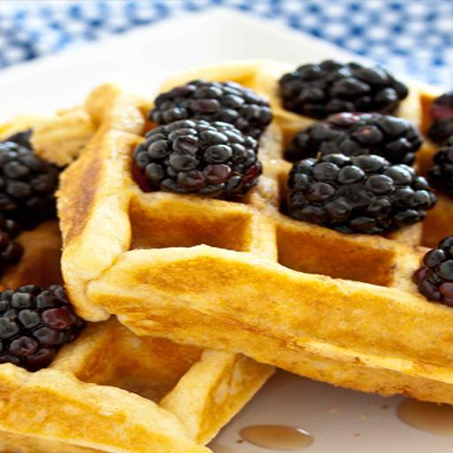 Waffle Recipes - Scrumptious Chocolate Belgian (Best Waffle Batter Mix)