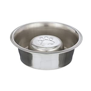 Neater Pet Brands Slow Feed Bowl Stainless Steel