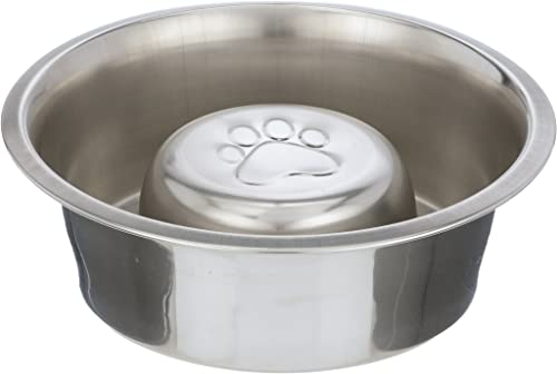 Neater-Pet-Brands-Slow-Feed-Bowl-Stainless-Steel