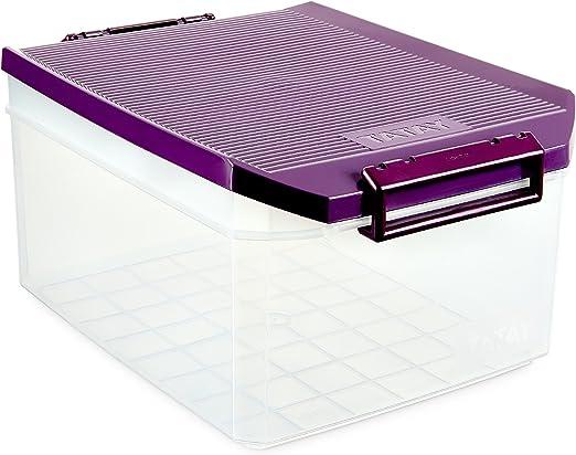 TATAY 1150120 - Caja de Almacenamiento Multiusos con Tapa, 14 l de ...