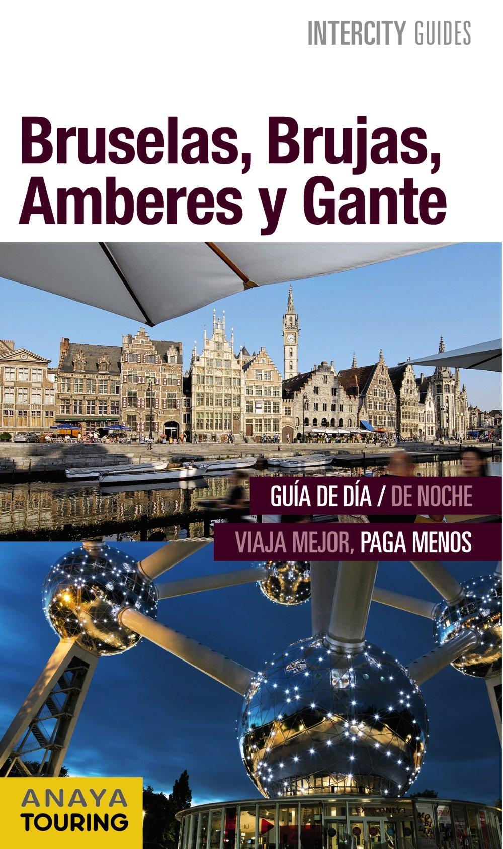 Bruselas Brujas Amberes Y Gante Intercity Guides Internacional Spanish Edition Anaya Touring Martín Aparicio Galo 9788499358024 Books