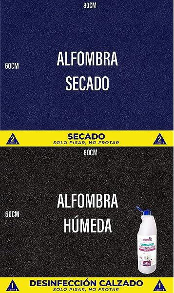 OBLITE Alfombra desinfectante + Limpiador Higienizante (x2), Felpudo Desinfectante para Entrada (80 x 60cm): Amazon.es: Hogar