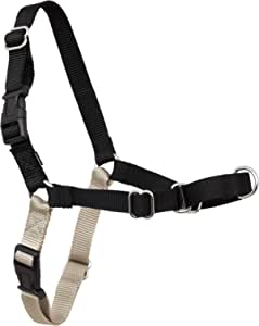PetSafe Easy Walk Dog Harness, No Pull Dog Harness – Perfect for Leash & Harness Training – Stops Pets from Pulling and Choking on Walks – Works with Small, Medium and Large Dogs