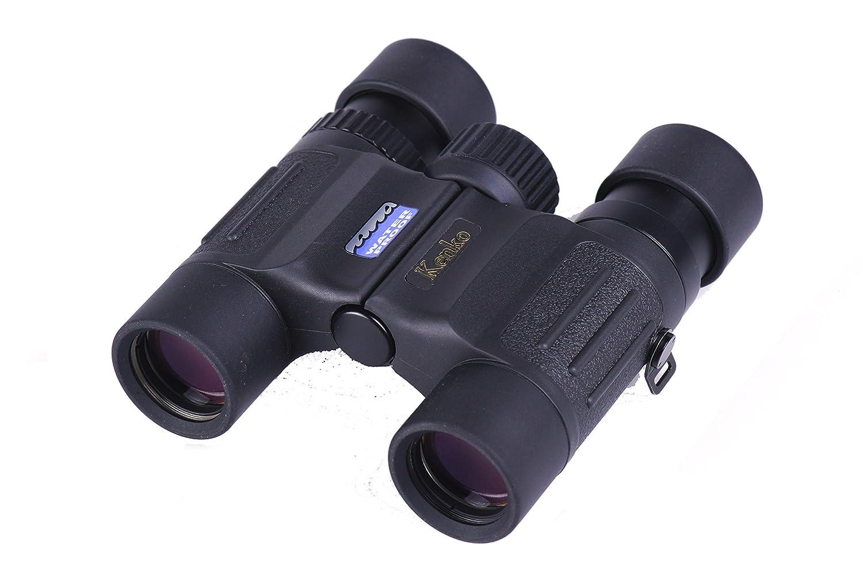 Kenko 双眼鏡 10×25 DH ダハプリズム 10倍 25口径 完全防水 日本製 102077 B0015UF0ZY