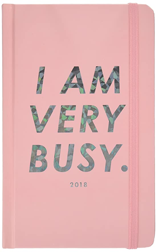 ban.do Design 17 Month Agenda 2017-18 Academic Calender, I Am Very Busy (70531)