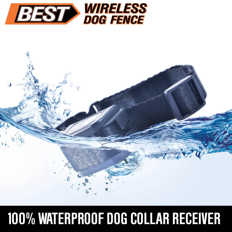 best wireless dog fence system with plug n play setup