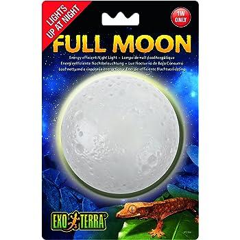 Amazon Com Exo Terra Pt2335 Day Night Led Fixture Small