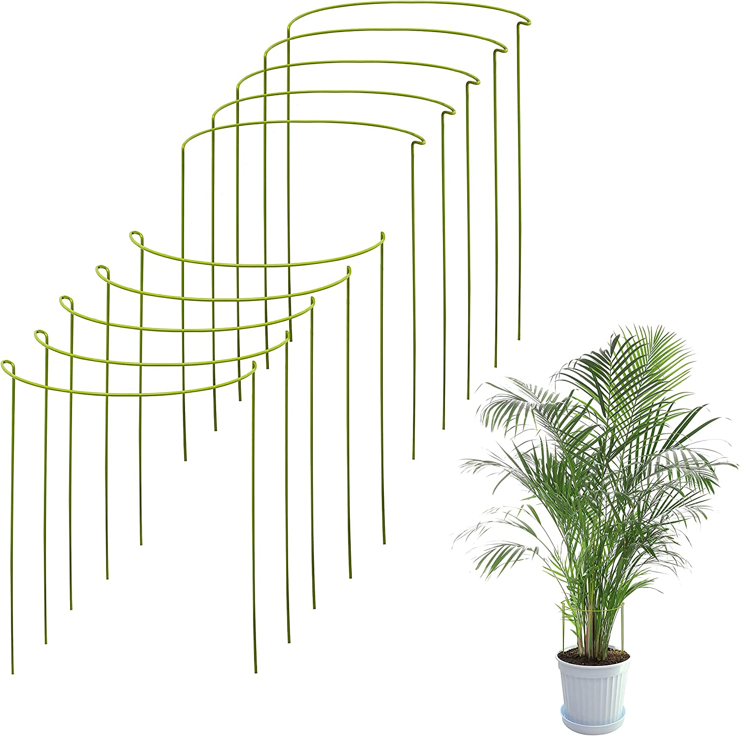 10 Pack Plant Stakes   Plant Supports for Tall Plants and Flowers   Green Support Cage   Help Your Plants Grow   Tomato Cages for Garden   Plant Sticks for Hydrangea, Peony, Perennials and More
