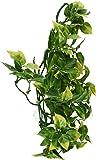 Exoterra Décoration Mandarin Plante Plastique Moyen Modèle pour Reptiles et Amphibiens