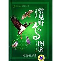 常见野鸟图鉴(北京地区)