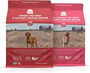 Open Farm Grass-Fed Beef and Wild-Caught Salmon Ancient Grains Dry Dog Food Bundle, Made with Wholesome Grains and No Artificial Flavors or Preservatives