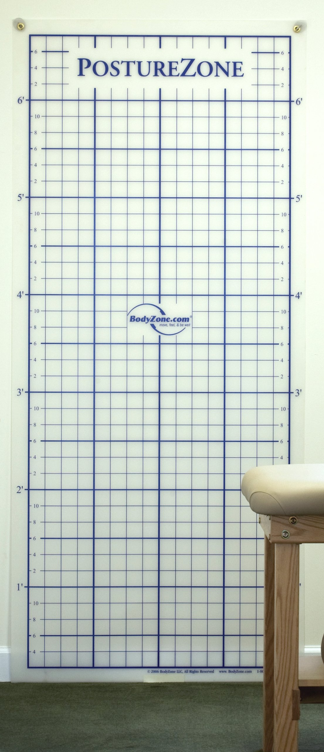 Posture Grid for Posture Assessment - Wall Mount