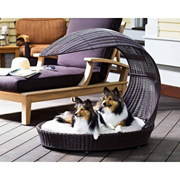 Refined Canine Chaise Lounger