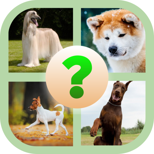 Popular Dogs Quiz Photo Test