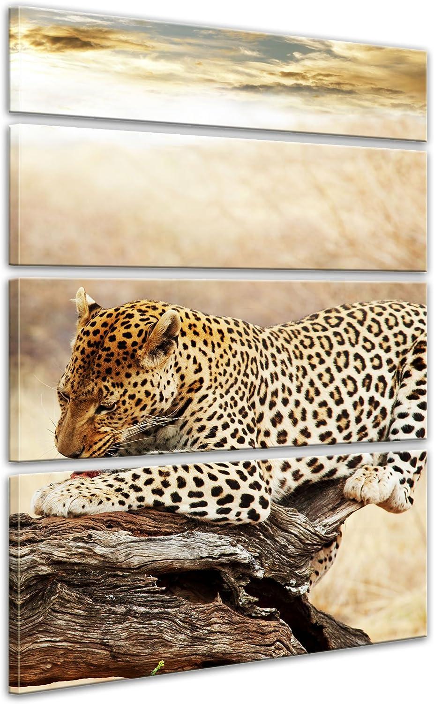 Bilderdepot24 Cuadros en Lienzo Leopardo 50 x 60 cm - Listo tensa ...