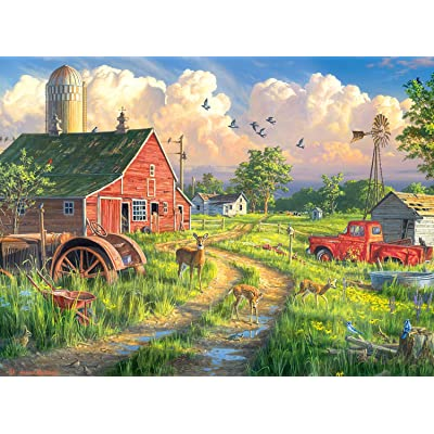 Buffalo Games - Hautman Brothers - New Life at The Old Farm - 1000 Piece Jigsaw Puzzle: Toys & Games