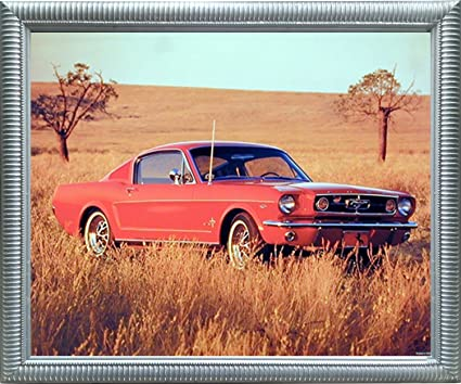 Sorry, that vintage ford mustang art theme interesting