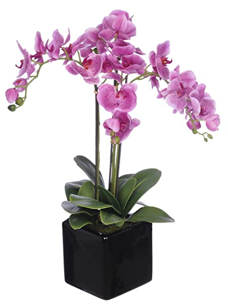 House of silk flowers artificial triple stem phalaenopsis orchid house of silk flowers artificial triple stem phalaenopsis orchid arrangement lavender mightylinksfo