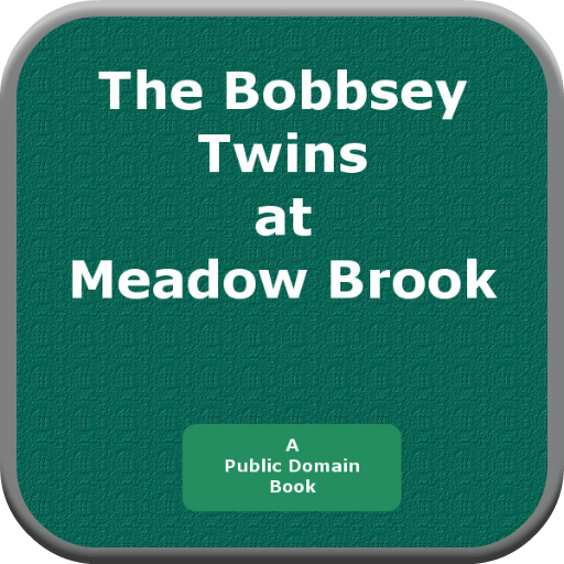The Bobbsey Twins at Meadow Brook PDF
