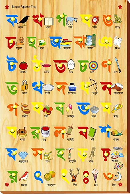 Buy Kinder Creative Bengali Alphabet With Picture With Knob Online