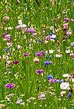Seedeo Große Kornblumenwiese 750 Samen