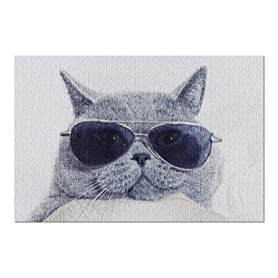 Grey British Shorthair Cat Face in Sunglasses 9011384 (Premium 500 Piece Jigsaw Puzzle for Adults, 13x19, Made in USA!): Toys & Games