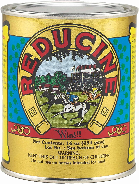 Horse Health Reducine Absorbent, 16 oz