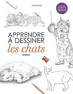 Amazon Fr Apprendre A Dessiner Les Chats Jean Pierre Lamerand