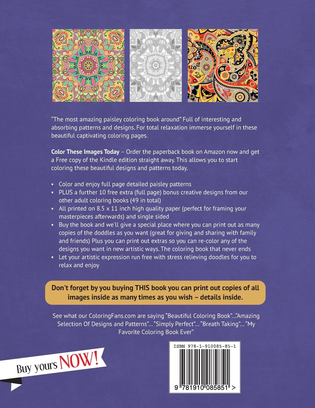 Amazon Paisley Coloring Book For Adults Creative Patterns And Designs Perfect Relaxation Books Volume 1