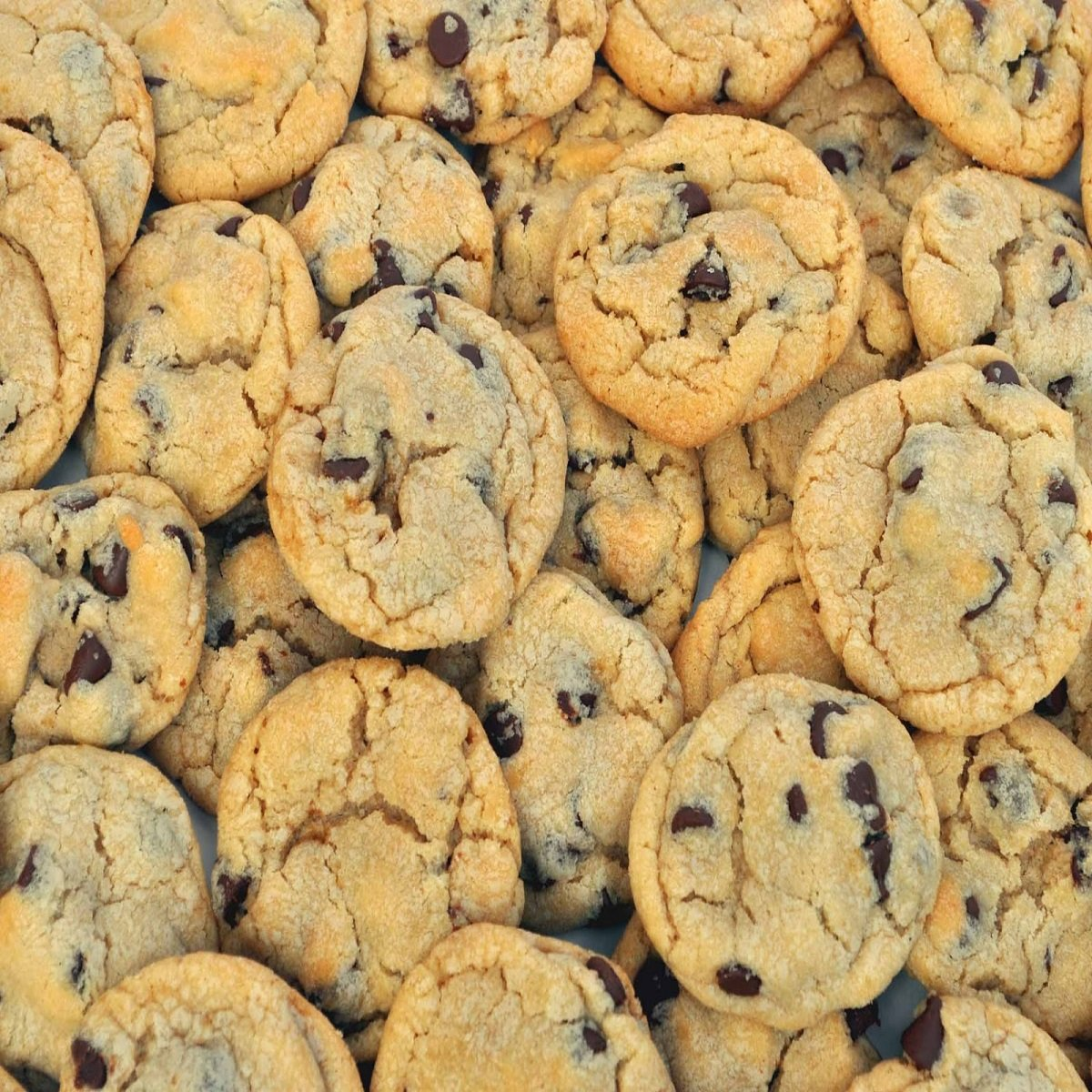 CHOCOLATE CHIP COOKIES FRAGRANCE OIL - 4 OZ - FOR CANDLE & SOAP MAKING BY VIRGINIA CANDLE SUPPLY - FREE S&H IN USA