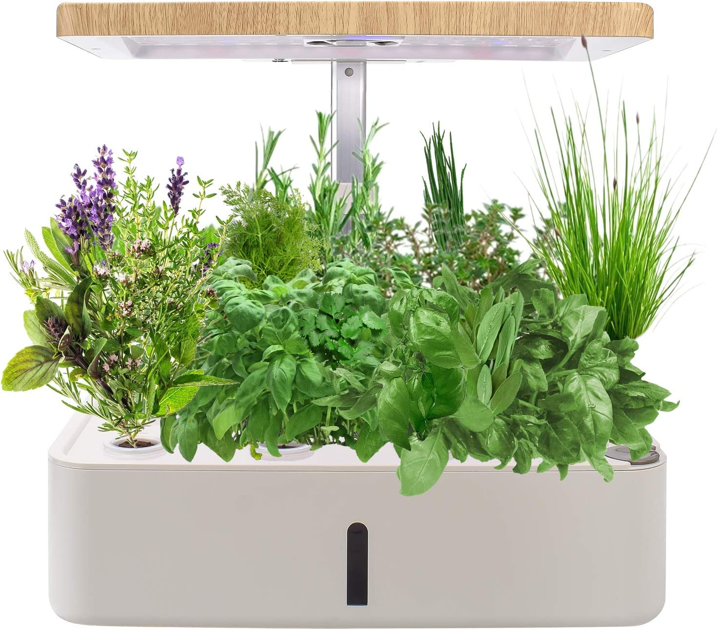KORAM HydroponicsGrowingSystem Kit for Indoor Gardening, Smart LED Plant Grow Light Germination Kits for Home Kitchen Planting 12 Pots (Nutrient & Seeds Not Included)