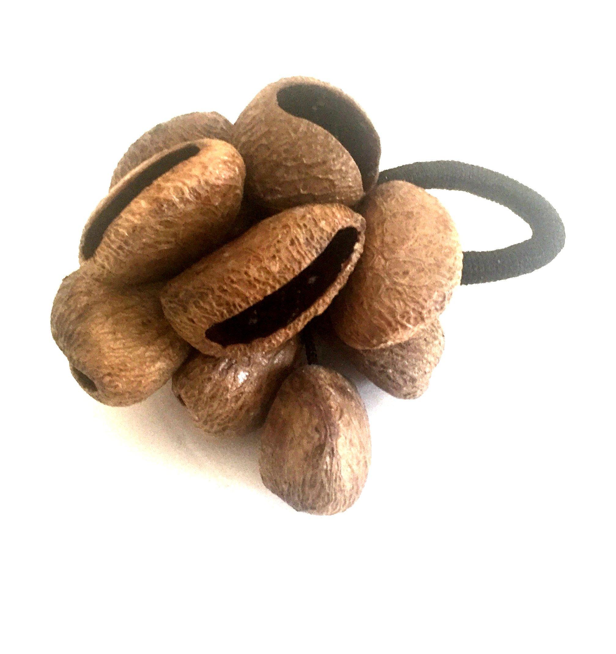Maracas Chestnut Seed Sacred Rattle Shaker Percussion Instrument - JIVE BRAND