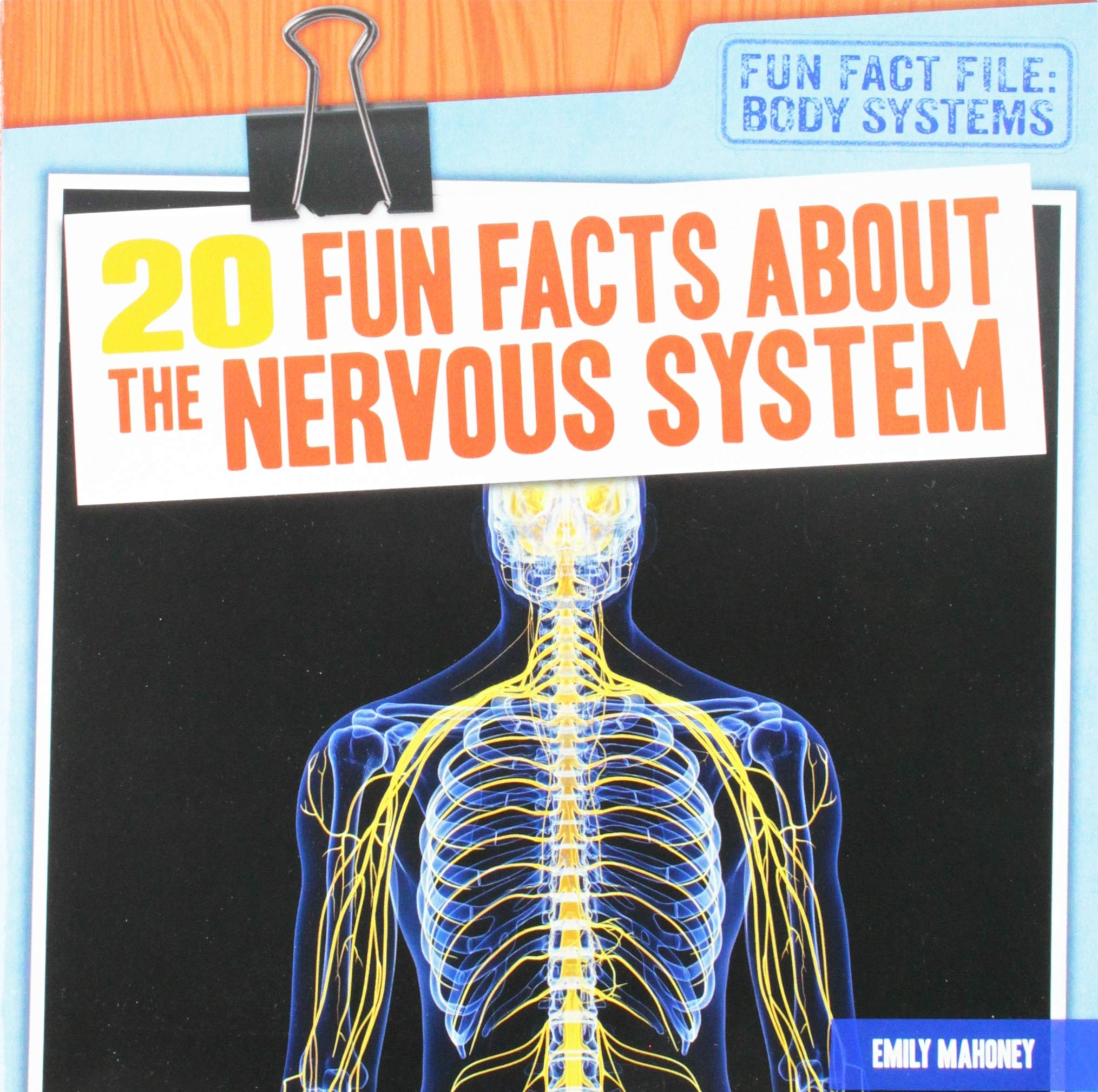 20 Fun Facts About The Nervous System Fun Fact File Body Systems