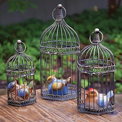 Amazon com: BIRD CAGES - CHELSEA GARDEN DECORATIVE BIRD CAGE