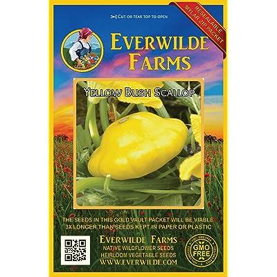 Verazui 40 Yellow Bush Scallop Summer Squash Seeds - : Garden & Outdoor