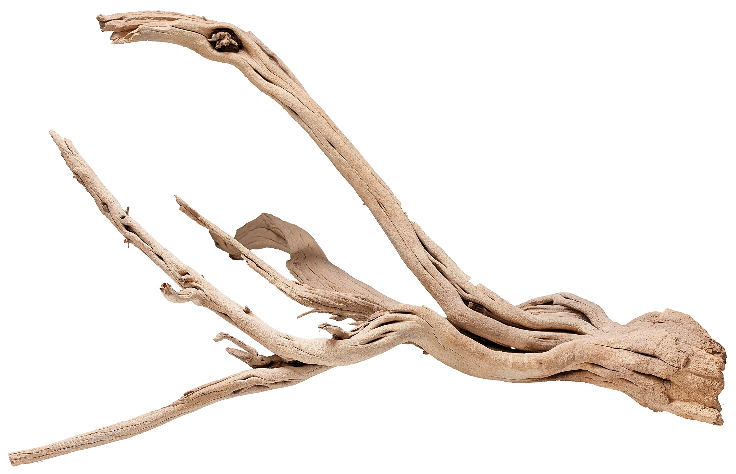 Pisces AM-GHOST024 24'' Ghost Wood Sandblasted Branchy, Null by Pisces