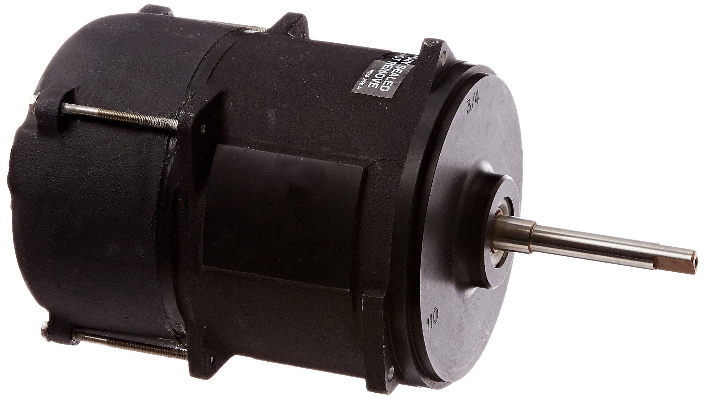 Hayward RCX400388 3/4-Horsepower NSPI King Motor Replacement for Hayward Commercial Cleaner