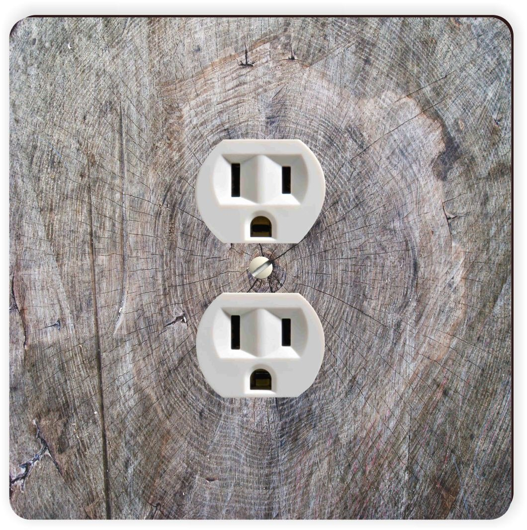 Rikki Knight Wood Tree Trunk Single Outlet Plate