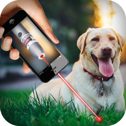 Laser For Dogs New Prank