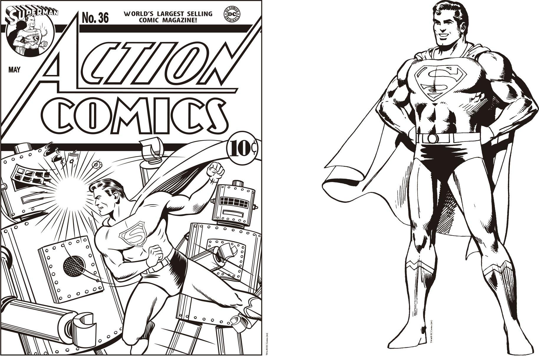 Dc Comics Superhéroes Libro Para Colorear Amazones Vvaa